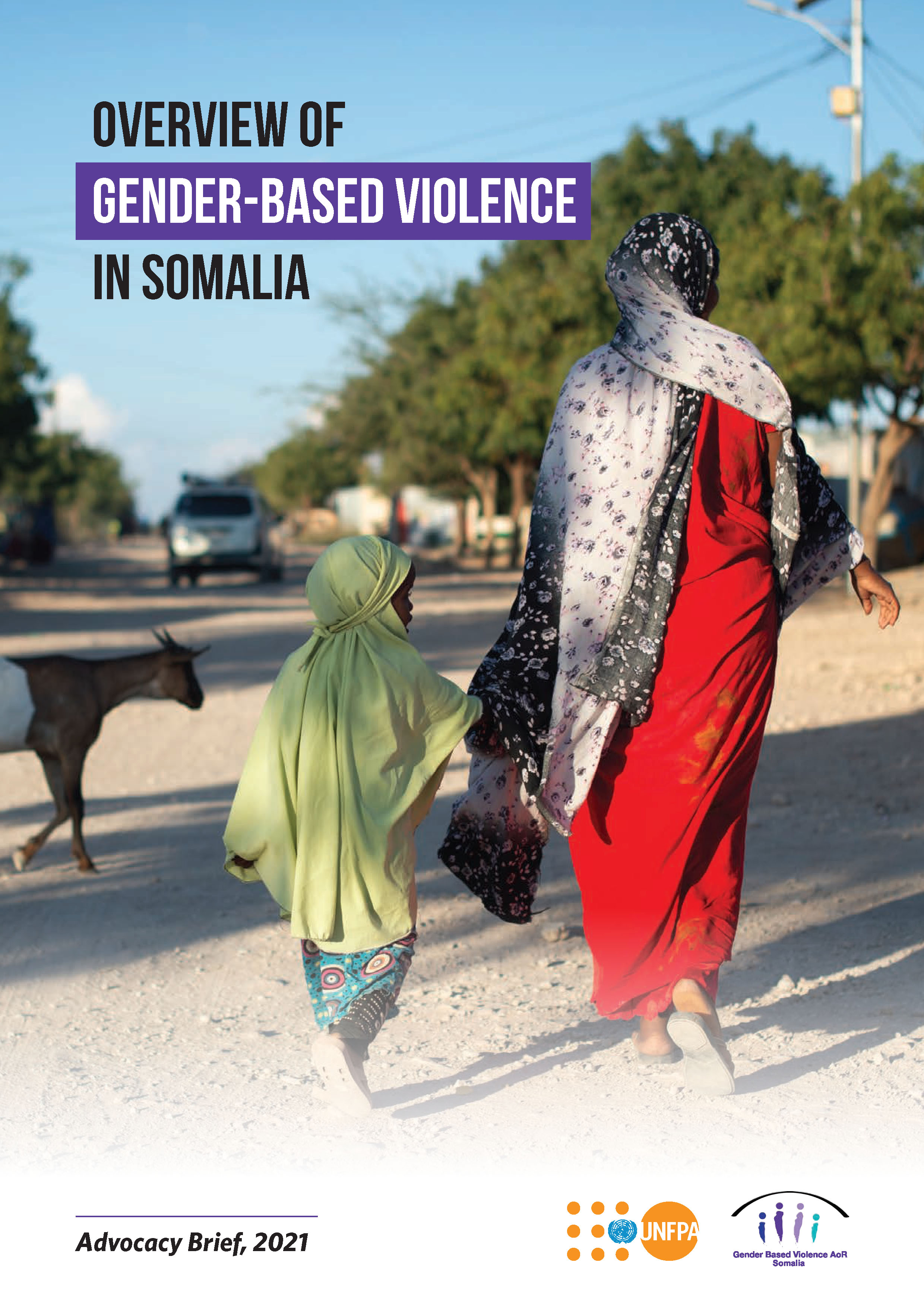 Overview of Gender-Based Violence in Somalia - Advocacy Brief, 2021